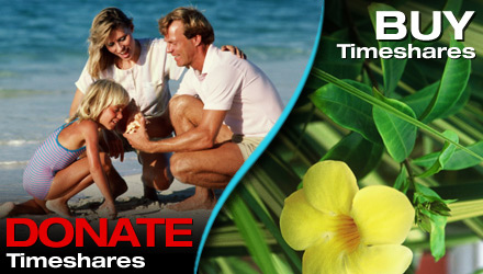 Buy or Donate Timeshares